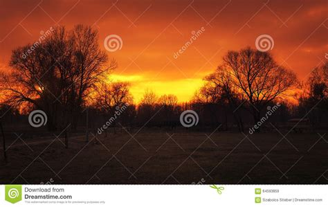 Sunset In The Park Stock Photo - Image: 64593859